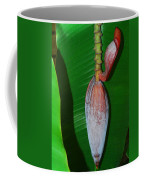 Banana Tree Bud Coffee Mug