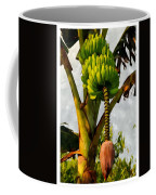 Banana Trees With Fruits And Flower In Lush Tropical Garden Coffee Mug