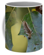 Banded Tussock Moth Caterpillar Coffee Mug