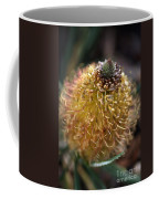 Banksia  Coffee Mug
