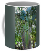Bannana Palm Coffee Mug