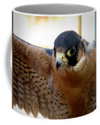 Barbary Falcon Wings Stretched Coffee Mug