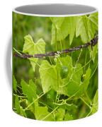 Barbwire And Vine Coffee Mug