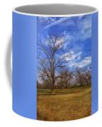 Bare Pecan Trees Coffee Mug