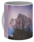 Bare Trees And Autumn Sky Coffee Mug