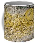 Bark Art Coffee Mug