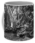 Barking Crab Coffee Mug