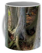 Barky Barky Trees Coffee Mug