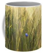 Barley And Corn Flowers In The Field Coffee Mug