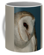 Barn Owl 2 Coffee Mug
