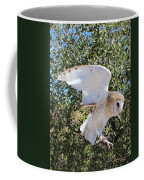 Barn Owl 2 Coffee Mug