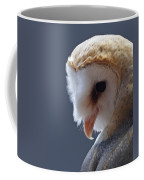 Barn Owl Dry Brushed Coffee Mug