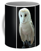 Barn Owl. Coffee Mug