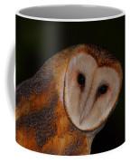 Barn Owl Portrait II Coffee Mug
