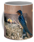 Barn Swallow At Nest Coffee Mug