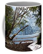 Barnes Creek At Lake Crescent - Washington Coffee Mug