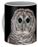 Barred Owl 3 Coffee Mug