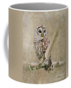 Barred Owl Portrait Coffee Mug