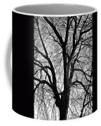 Barren 2 Bw Coffee Mug
