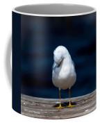 Bashful Seagull  Coffee Mug