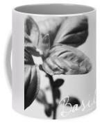 Basil Coffee Mug by Linda Woods