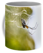 Basilica Orb Weaver Coffee Mug