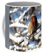 Basking In Winter Light Coffee Mug