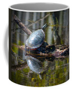 Basking Turtle Coffee Mug