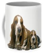 Basset Hound Dogs Coffee Mug