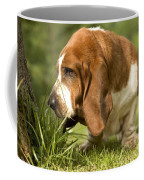Basset Hound Sniffing Coffee Mug
