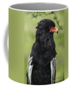 Bateleur 3 Coffee Mug