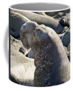Bull Elephant Seal Battle Scars Coffee Mug