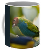 Bay-headed Tanager - Tangara Gyrola Coffee Mug