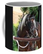 Bay Pinto Amish Buggy Horse Coffee Mug
