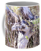 Bayberry And Driftwood Coffee Mug