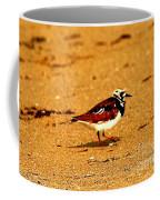 Beach Bird 1 Coffee Mug