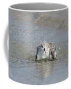 Beach Bird Bath 2 Coffee Mug