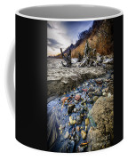 Beach Brook At Scarborough Bluffs Coffee Mug