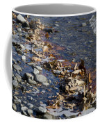 Beach With Stones Coffee Mug