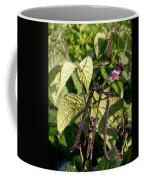 Bean And Beauty Coffee Mug