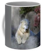 Bear 3789 Coffee Mug
