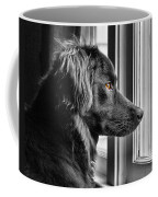 Bear At Window Coffee Mug