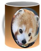 Bear In A Ball Coffee Mug