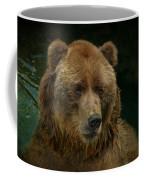 Bear In The Pool Coffee Mug