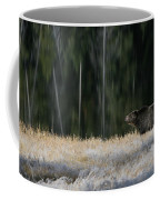 Bear Lake Coffee Mug