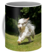 Bearded Collie Running Coffee Mug