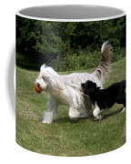 Bearded Collies Playing Coffee Mug by John Daniels