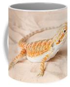 Bearded Dragon Pogona Sp. On Sand Coffee Mug