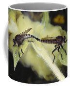Bearded Robber Flies Coffee Mug