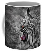 Bearizona Bobcat Coffee Mug by Priscilla Burgers